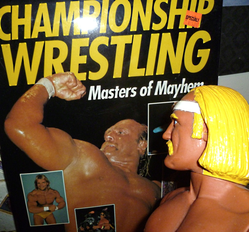 My Vintage Wrestling Collection: WCW OSTM Cage Update! Hulk_h16