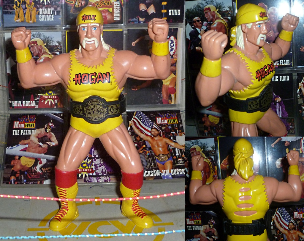 My Vintage Wrestling Collection: WCW OSTM Cage Update! - Page 2 Hulk_h19