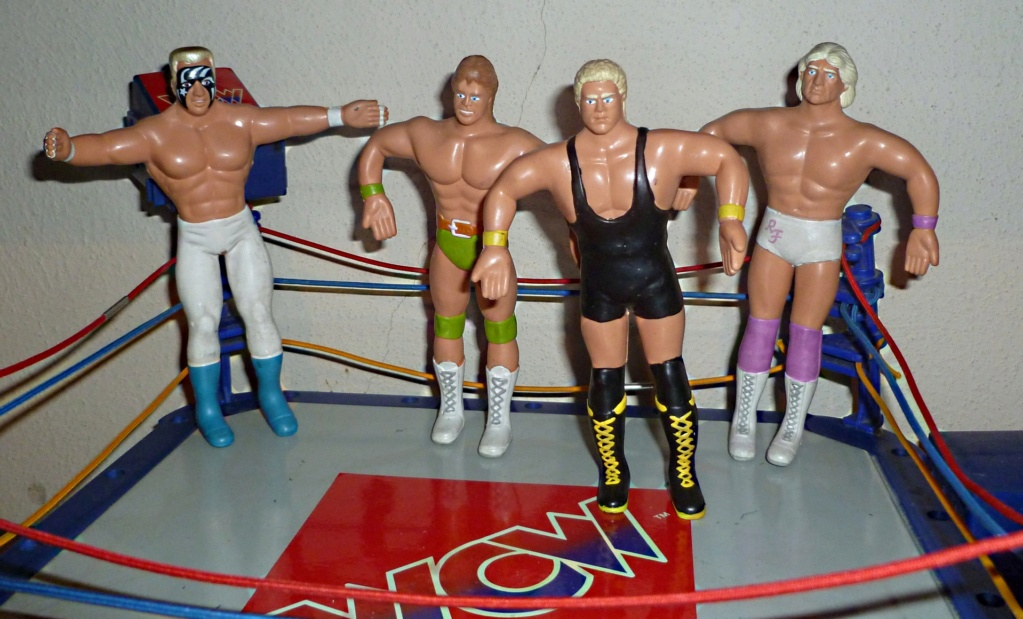 My Vintage Wrestling Collection: WCW OSTM Cage Update! Just_t10