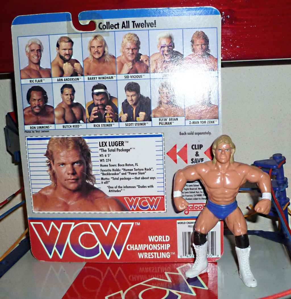 My Vintage Wrestling Collection: WCW OSTM Cage Update! Lex_lu13