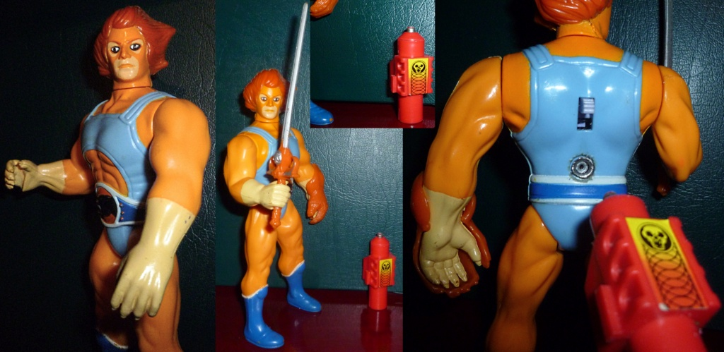 My VINTAGE Action Figure Collection: Gabara, The Mummy's Curse & More! - Page 5 Lion-o11