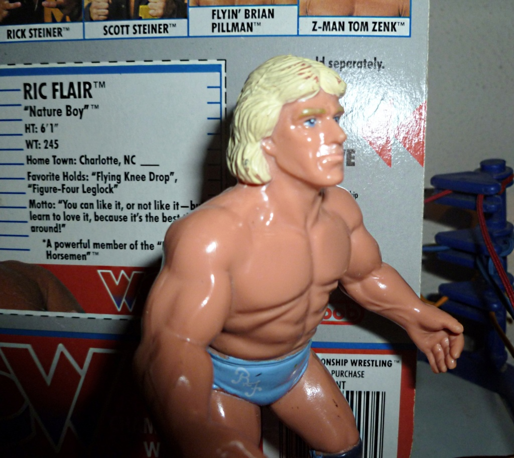 My Vintage Wrestling Collection: WCW OSTM Cage Update! Ric_fl10