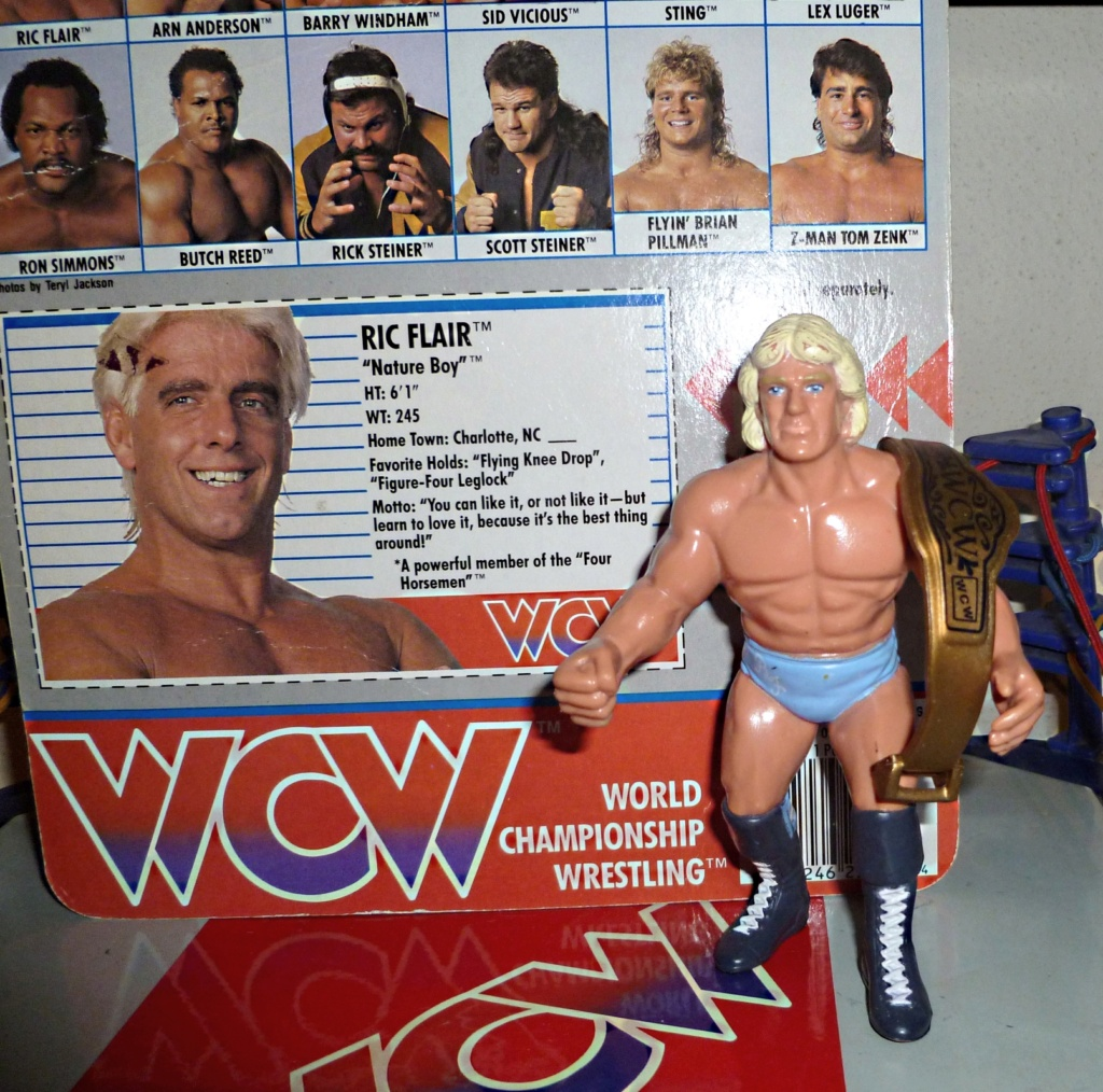 My Vintage Wrestling Collection: WCW OSTM Cage Update! Ric_fl11