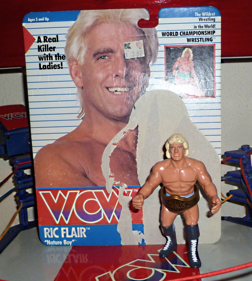 My Vintage Wrestling Collection: WCW OSTM Cage Update! Ric_fl12