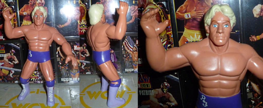 My Vintage Wrestling Collection: WCW OSTM Cage Update! - Page 2 Ric_fl14