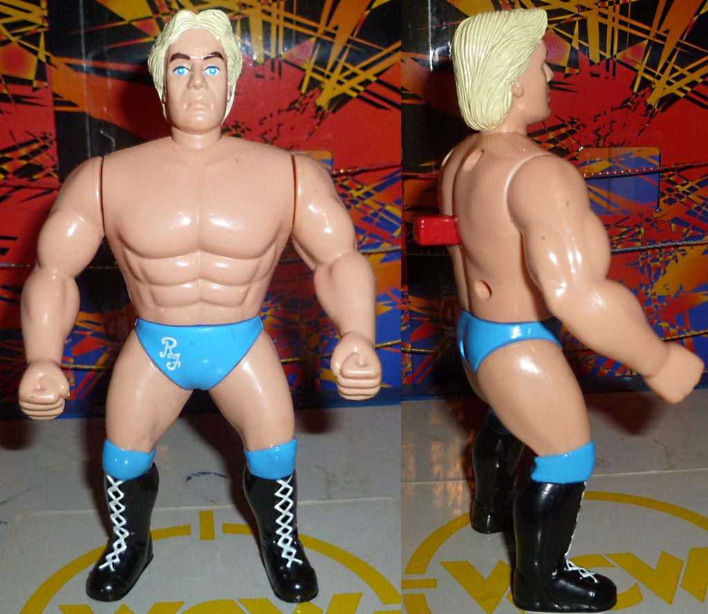 My Vintage Wrestling Collection: WCW OSTM Cage Update! - Page 2 Ric_fl17