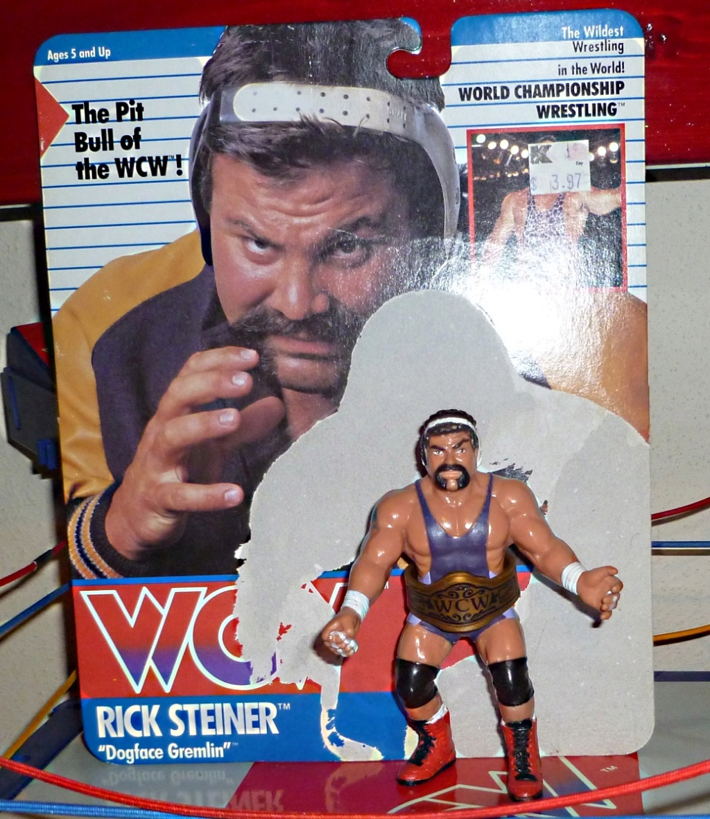 My Vintage Wrestling Collection: WCW OSTM Cage Update! Rick_s11