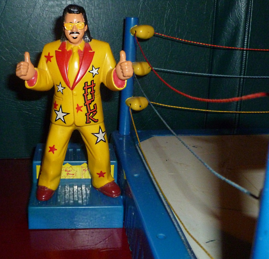 My Vintage Wrestling Collection: WCW OSTM Cage Update! - Page 2 Ring_s12