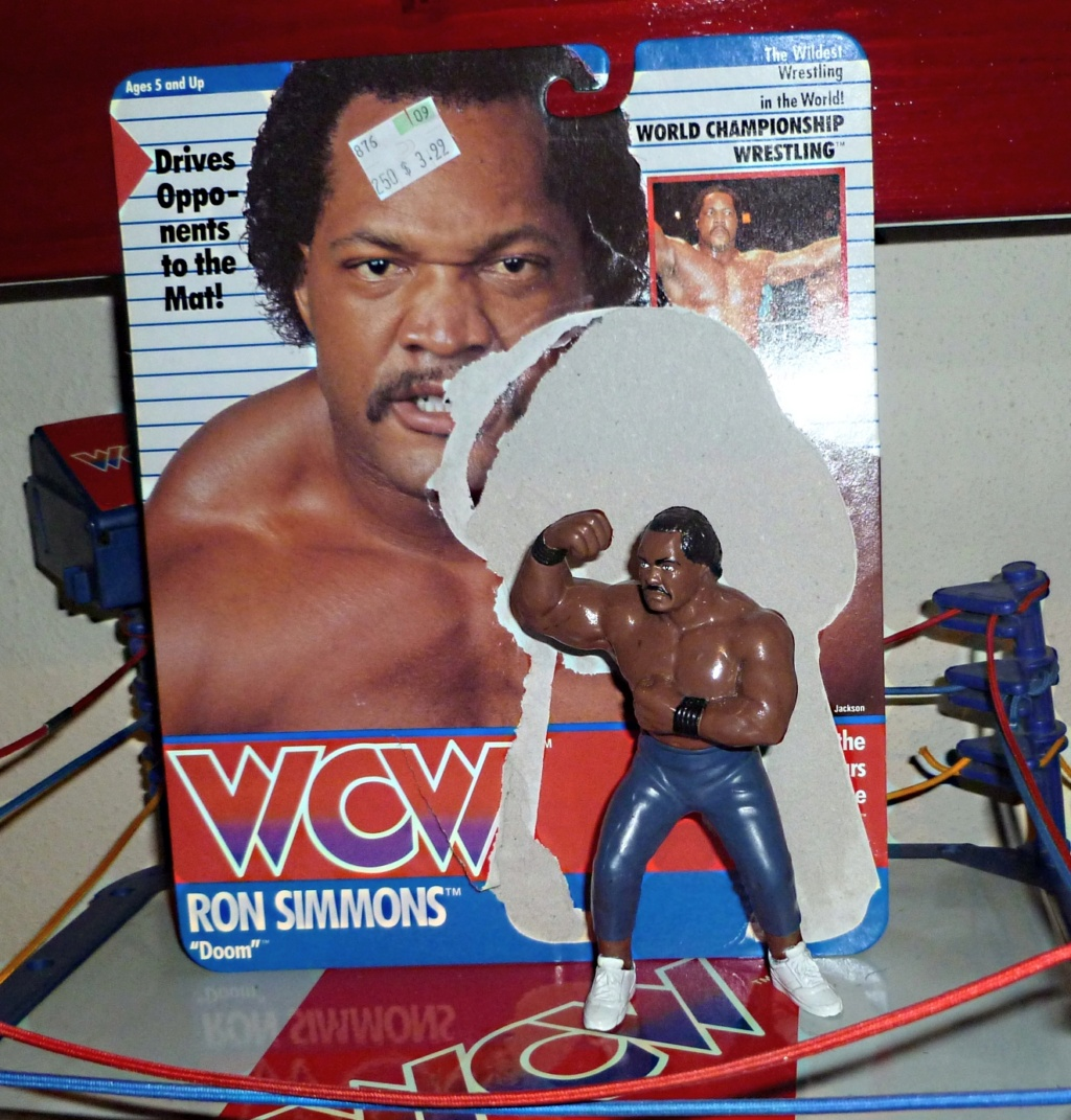 My Vintage Wrestling Collection: WCW OSTM Cage Update! Ron_si11