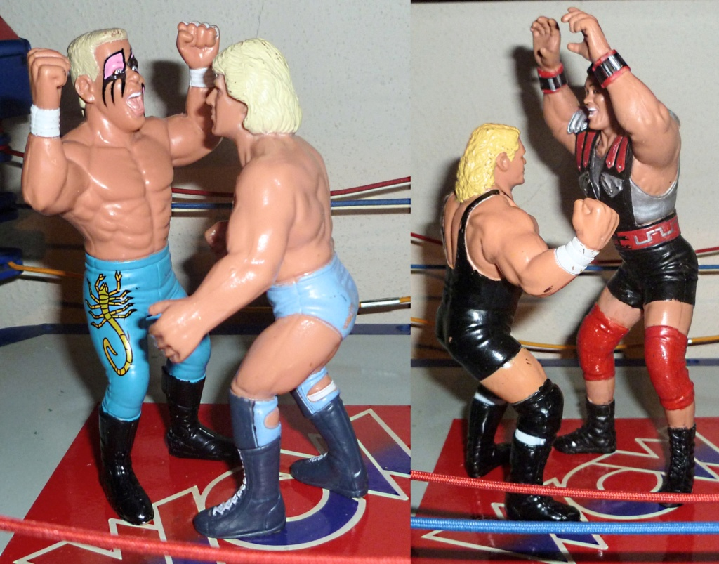 My Vintage Wrestling Collection: WCW OSTM Cage Update! Scale_11