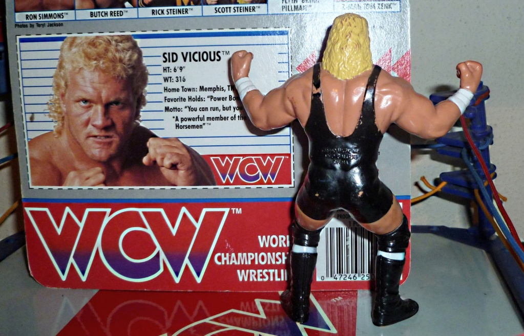 My Vintage Wrestling Collection: WCW OSTM Cage Update! Sid_210