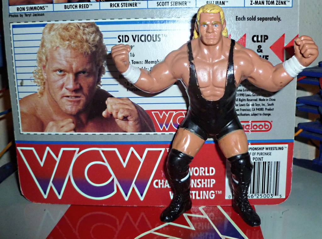 My Vintage Wrestling Collection: WCW OSTM Cage Update! Sid_310