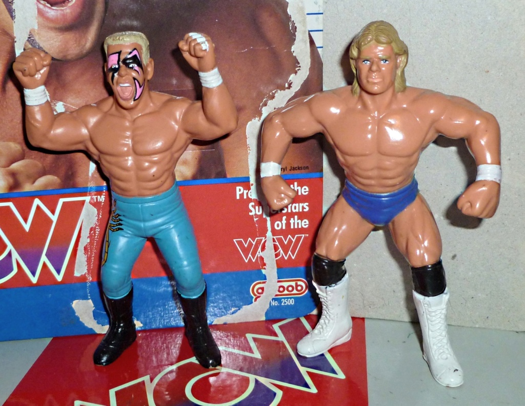 My Vintage Wrestling Collection: WCW OSTM Cage Update! Sting_12
