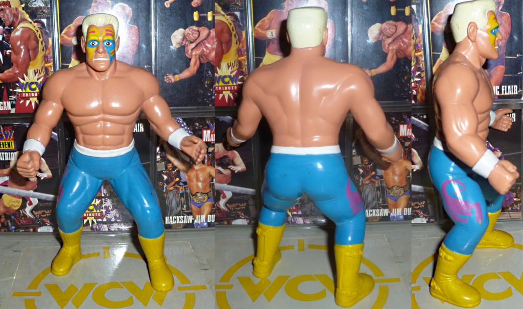 My Vintage Wrestling Collection: WCW OSTM Cage Update! - Page 2 Sting_14