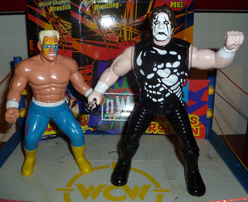 My Vintage Wrestling Collection: WCW OSTM Cage Update! - Page 2 Sting_18
