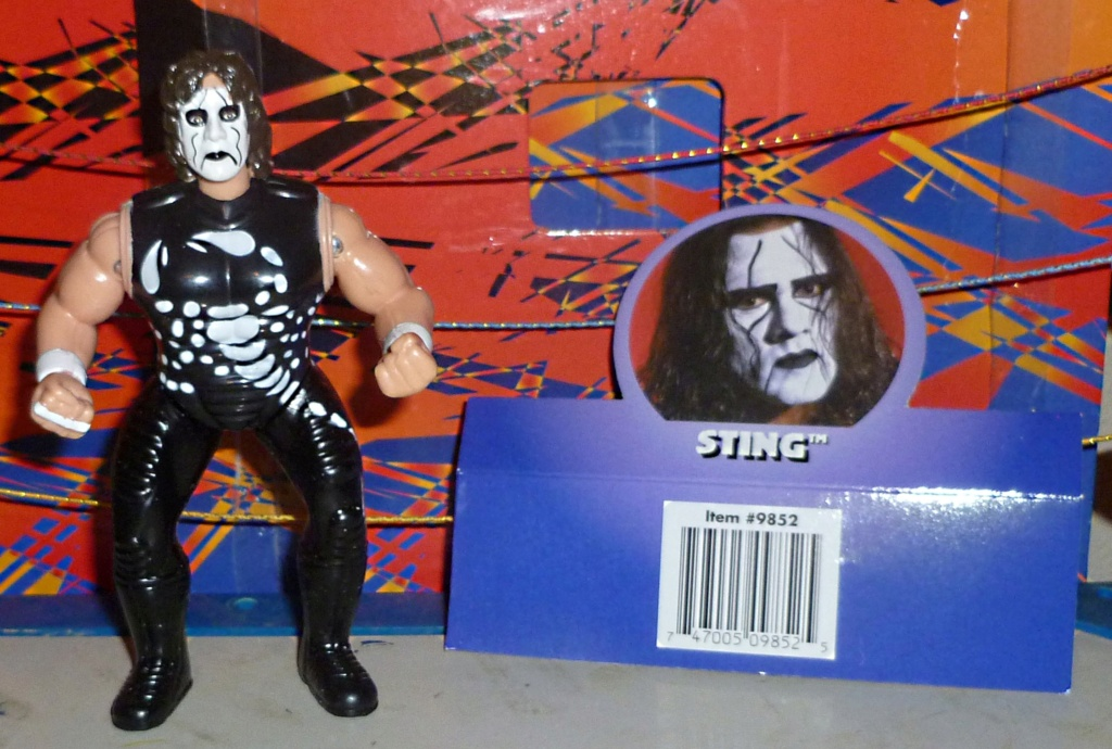 My Vintage Wrestling Collection: WCW OSTM Cage Update! - Page 2 Sting_20
