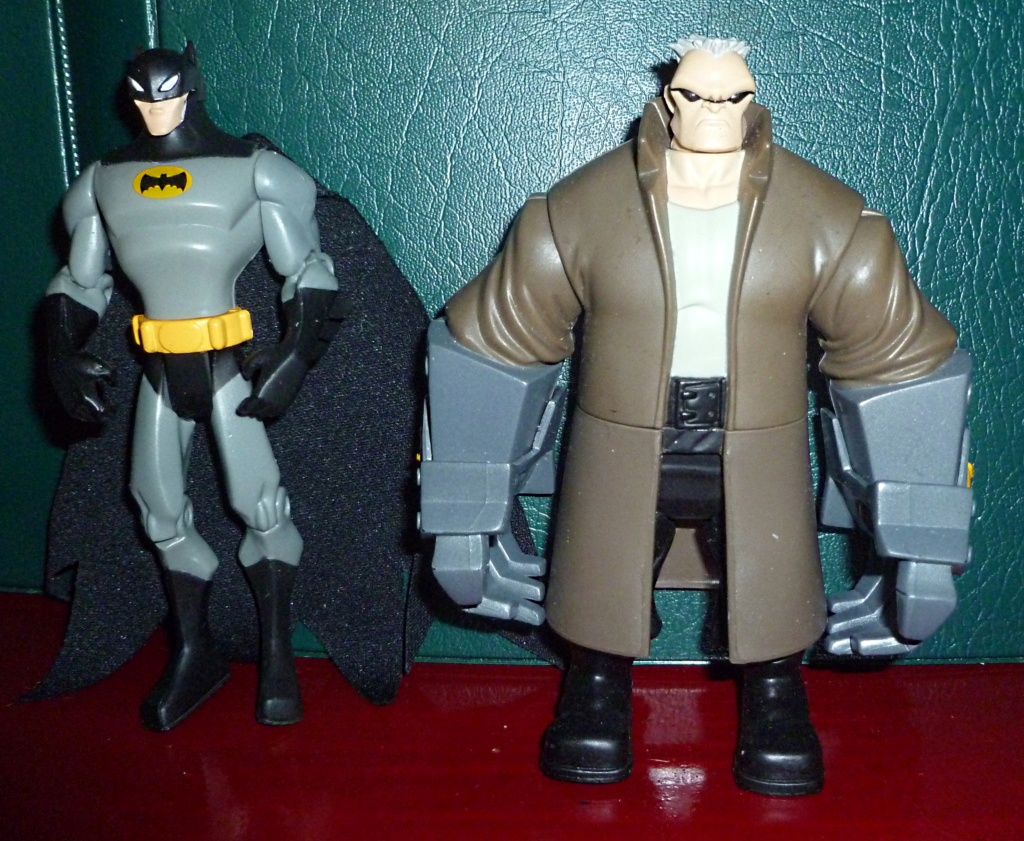 My Miscellaneous Modern Collection: The Batman (My little) Collection! Temblo10