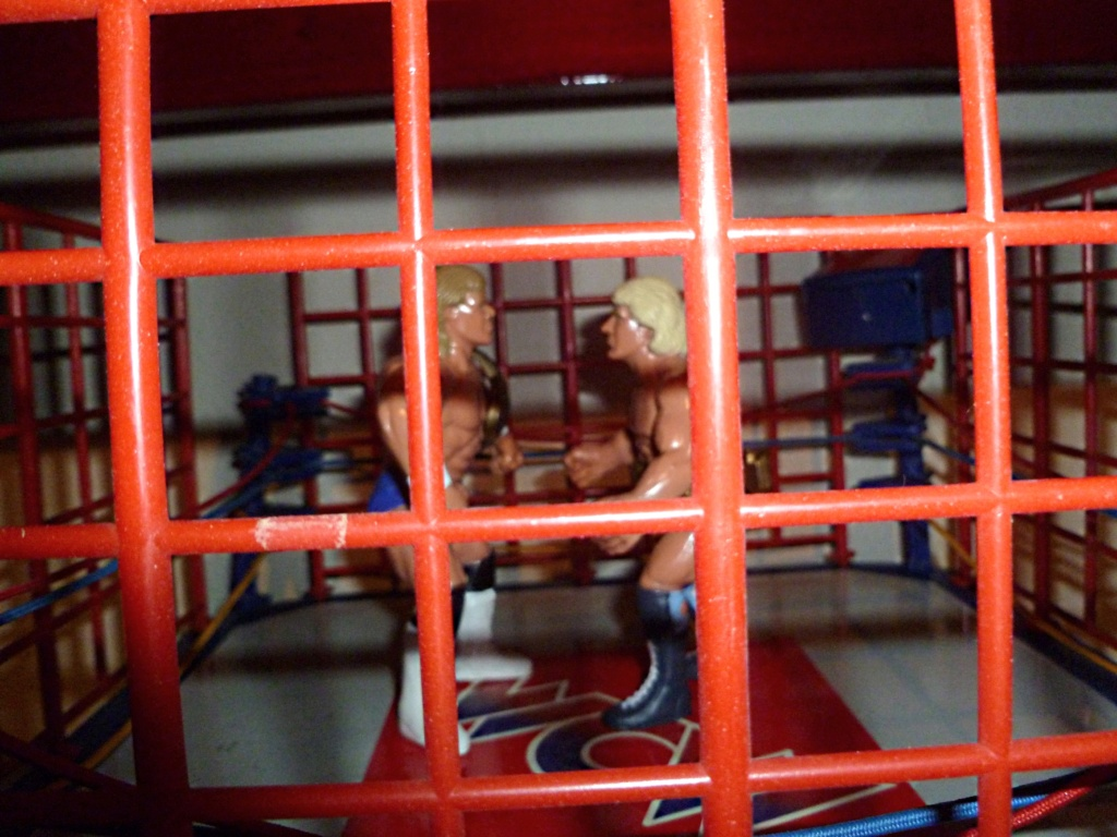 My Vintage Wrestling Collection: WCW OSTM Cage Update! The_ca11