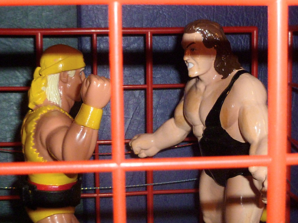 My Vintage Wrestling Collection: WCW OSTM Cage Update! - Page 2 The_ca14