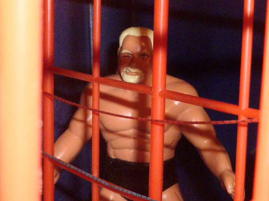 My Vintage Wrestling Collection: WCW OSTM Cage Update! - Page 2 The_ca18
