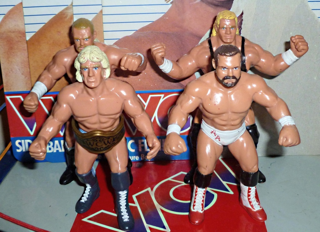 My Vintage Wrestling Collection: WCW OSTM Cage Update! The_fo10