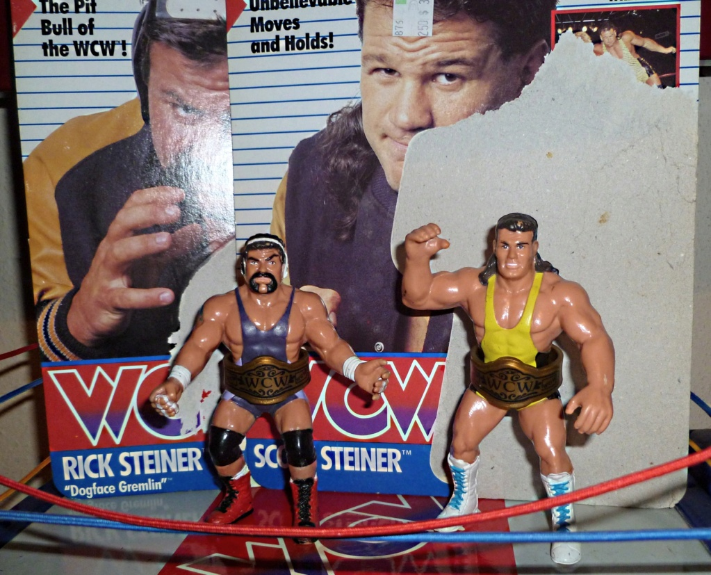 My Vintage Wrestling Collection: WCW OSTM Cage Update! The_st10