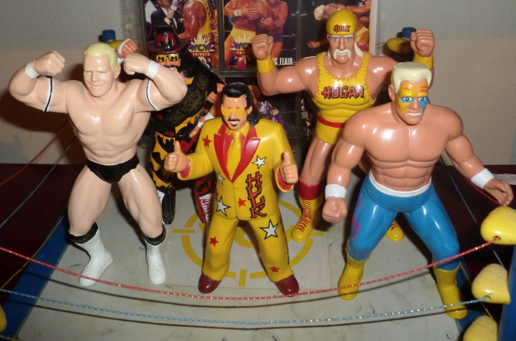 My Vintage Wrestling Collection: WCW OSTM Cage Update! - Page 2 War_ga10