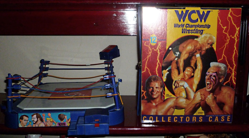 My Vintage Wrestling Collection: WCW OSTM Cage Update! Wcw_ga10