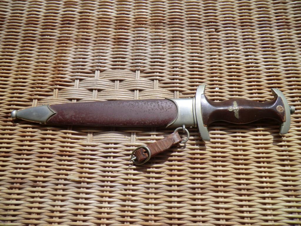 Dernière rentrée de l'été (dague SA) Cimg4536