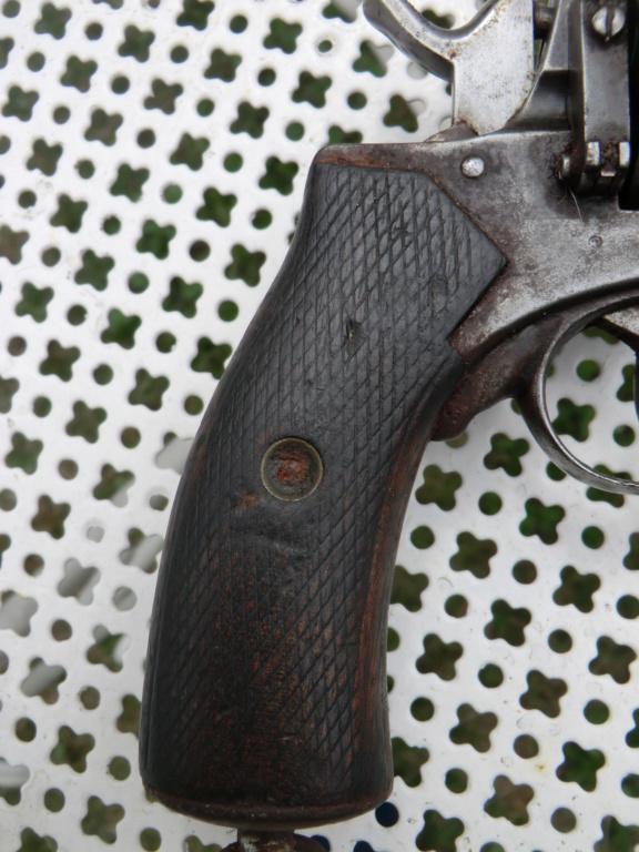 Revolver Municipal Cimg5716