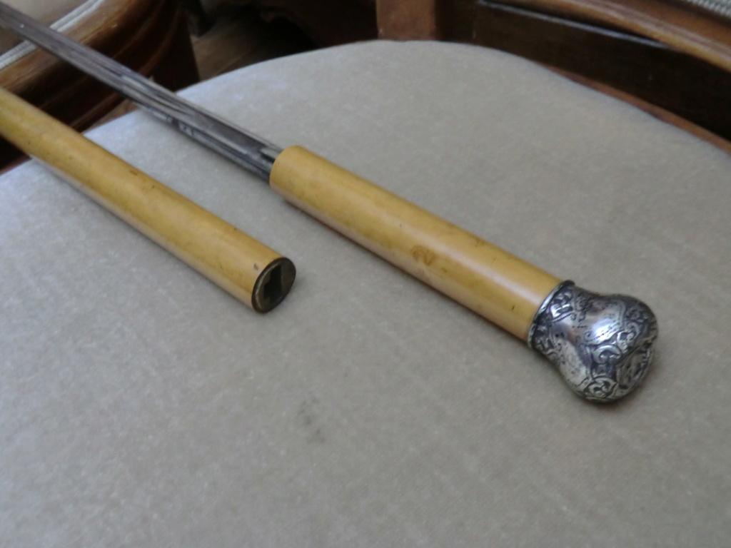 Canne-épée et petite curiosité Cimg7812