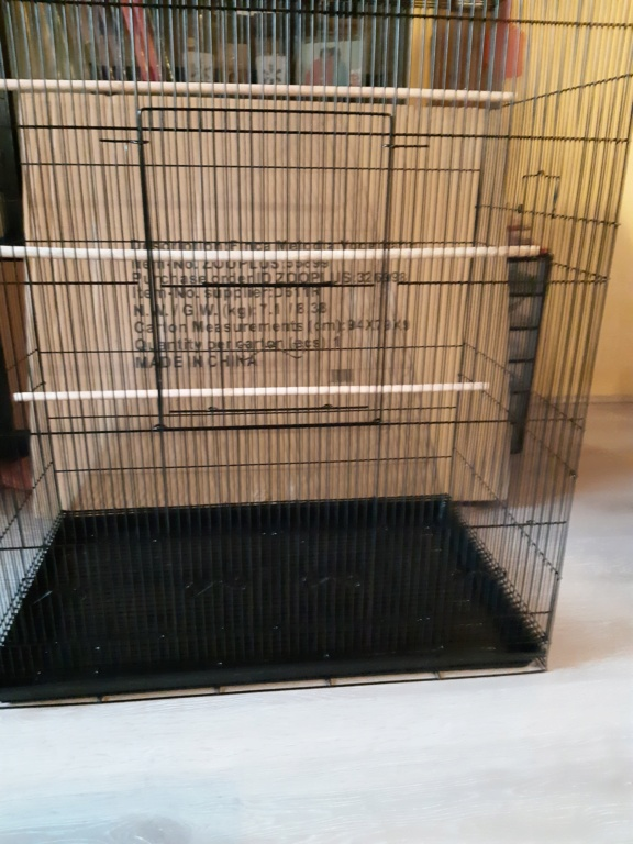 Aménagement de ma cage 20191010