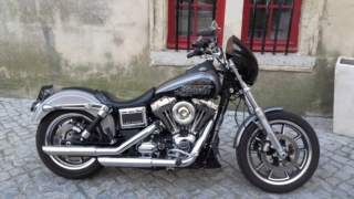 DYNA LOW RIDER ,combien sommes nous ? - Page 11 49548011