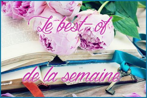 {Recommandations lecture} Le best-of de la semaine ! - Page 17 Best_o15
