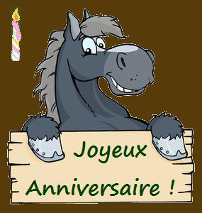 JOYEUX ANNIVERSAIRE LEPARIEUR E4399010