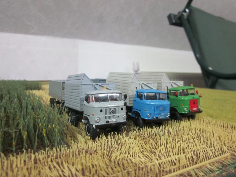 W 50 und L60 mit Schwerhäckselaufbau Img_5112