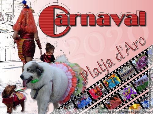 Platja d'Aro, son carnaval mais pas que... 342_pl11