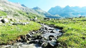 Le ruisseau de montagne Ruisse10