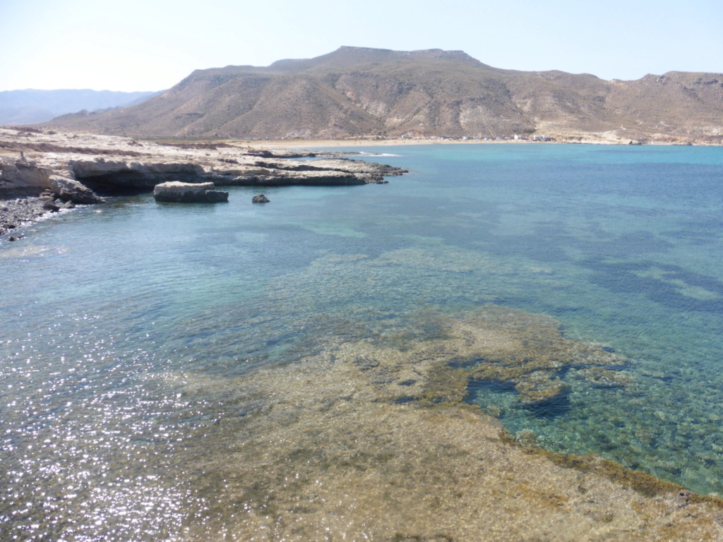 Voyage en Andalousie P1060014