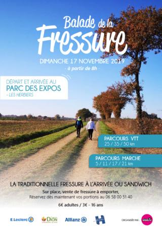 LES HERBIERS (85) - Balade de la Fressure - dimanche 17 novembre 2019 Captur16
