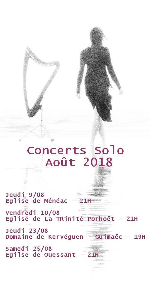 Concert Gwenaël Kerléo 38612110