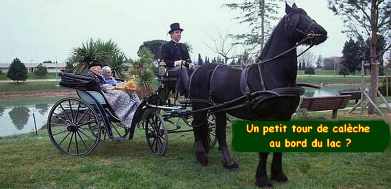 C- BIOGRAPHIE DE JEANNE CALMENT (1875-1997) Ballad10