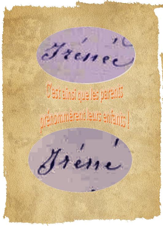 B- PRÉSENTATION DE FRATRIES DE CENTENAIRES Irzonz10