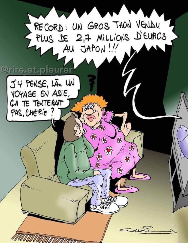 Humour en image du Forum Passion-Harley  ... - Page 28 49998610