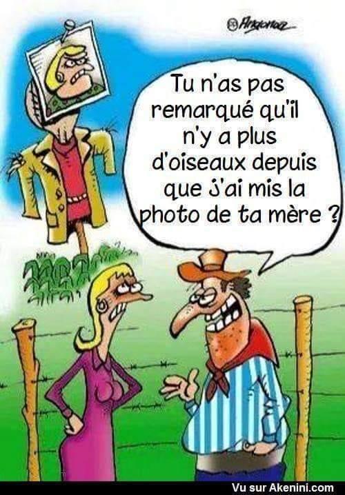 Humour en image du Forum Passion-Harley  ... - Page 2 65391510