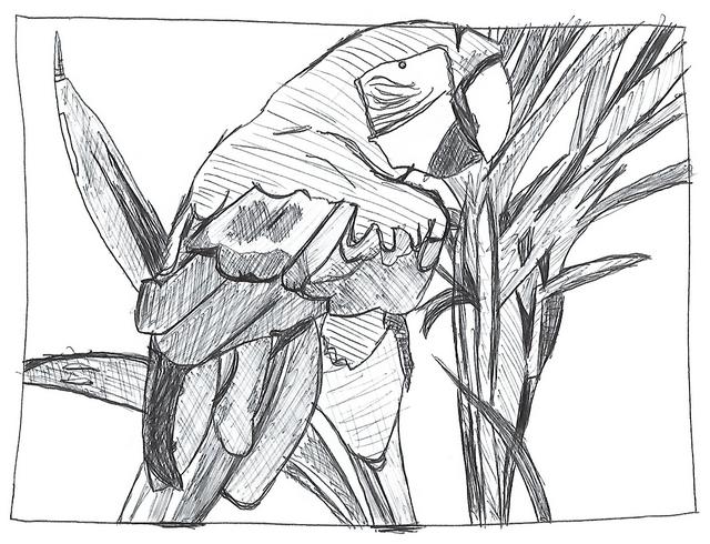 Apprendre à dessiner : conseils. 00211