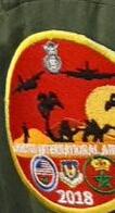 RMAF insignia Swirls Patches / Ecussons,cocardes et Insignes Des FRA - Page 7 Dqygk712