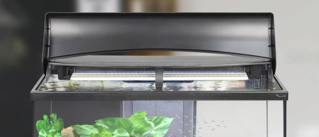 Eclairage Aquarium planté 20180110