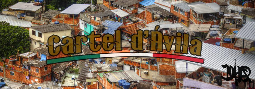 Cartel d'Ávila - Page 3 Favela10