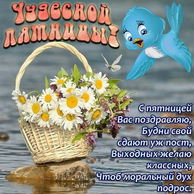 Диавельторос- С ДНЕМ РОЖДЕНИЯ! 28041110